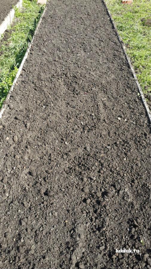 Подготовка грядки для посадки севка лука