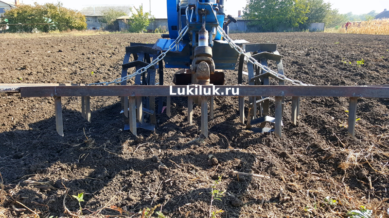 Подготовка почвы под посадку лука весной